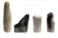 polierte Stücke (120-160mm) aus versteinertem Holz